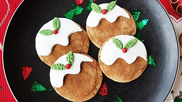low protein christmas cookies